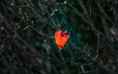 For Parents: When Love Hurts on Valentine's Day